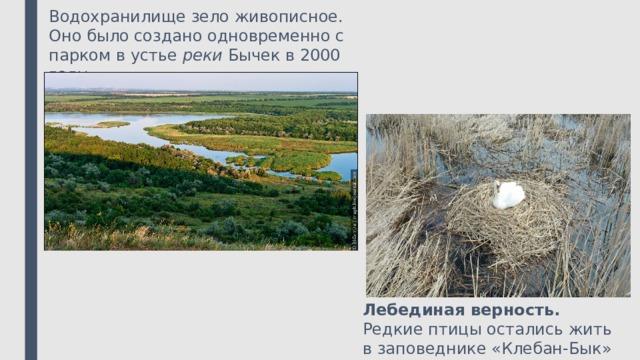 Водохранилище зело живописное.  Оно было создано одновременно с парком в устье реки Бычек в 2000 году. Лебединая верность. Редкие птицы остались жить в заповеднике «Клебан-Бык»