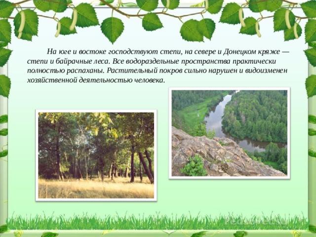 На юге и востоке господствуют степи, на севере и Донецком кряже — степи и байрачные леса. Все водораздельные пространства практически полностью распаханы. Растительный покров сильно нарушен и видоизменен хозяйственной деятельностью человека.