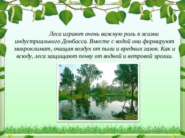 Леса играют очень важную роль в жизни индустриального Донбасса. Вместе с водой они формируют микроклимат, очищая воздух от пыли и вредных газов. Как и всюду, леса защищают почву от водной и ветровой эрозии.