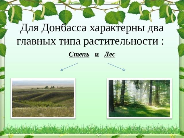 Для Донбасса характерны два главных типа растительности :  Степь и Лес