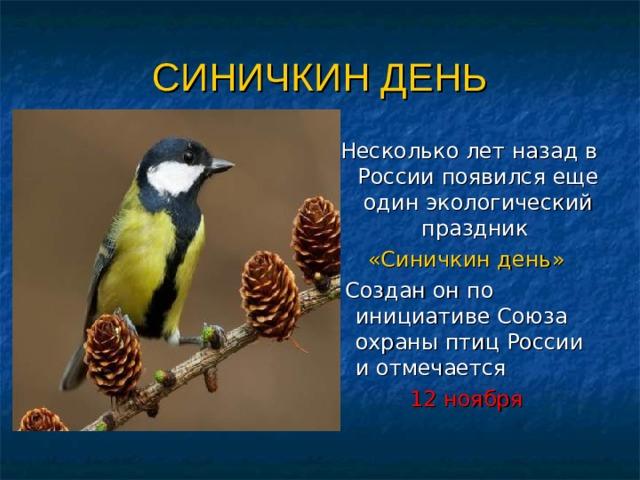 СИНИЧКИН ДЕНЬ  Несколько лет назад в России появился еще один экологический праздник «Синичкин день»  Создан он по инициативе Союза охраны птиц России и отмечается 12 ноября