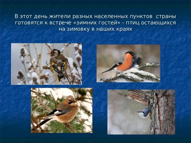 В этот день жители разных населенных пунктов страны готовятся к встрече «зимних гостей» - птиц остающихся на зимовку в наших краях