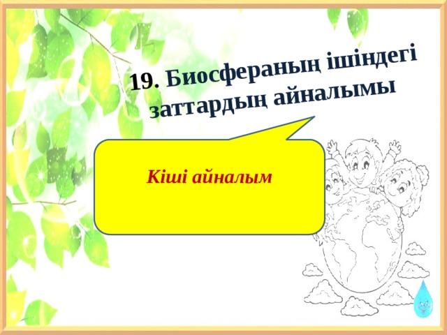 19. Биосфераның ішіндегі заттардың айналымы    Кіші айналым