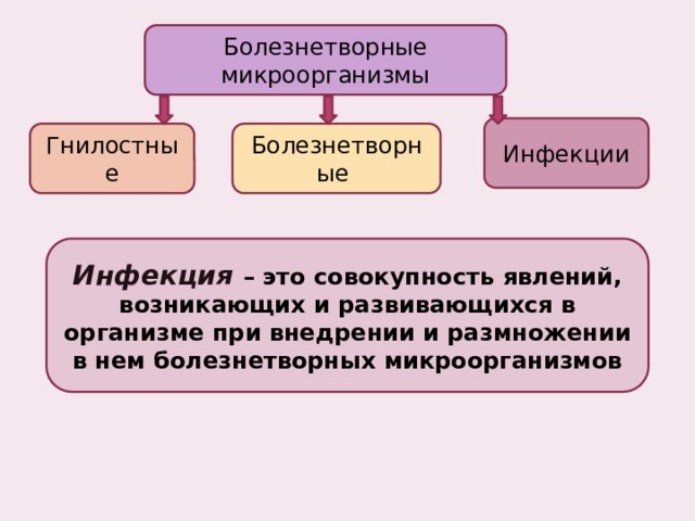 Болезнетворные микроорганизмы Инфекции Гнилостные Болезнетворные Инфекция  – это совокупность явлений, возникающих и развивающихся в организме при внедрении и размножении в нем болезнетворных микроорганизмов