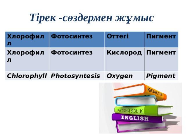 Тірек -сөздермен жұмыс Хлорофилл Фотосинтез Хлорофилл Фотосинтез Оттегі Chlorophyll Пигмент Кислород Photosyntesis Пигмент Oxygen Pigment
