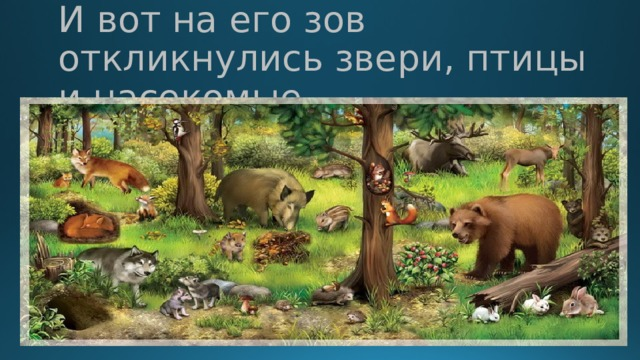 И вот на его зов откликнулись звери, птицы и насекомые.