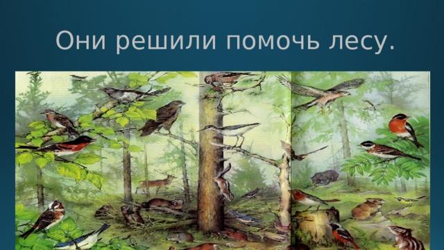 Они решили помочь лесу.