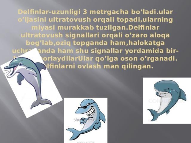 Delfinlar-uzunligi 3 metrgacha bo'ladi.ular o'ljasini ultratovush orqali topadi,ularning miyasi murakkab tuzilgan.Delfinlar ultratovush signallari orqali o'zaro aloqa bog'lab,oziq topganda ham,halokatga uchraganda ham shu signallar yordamida bir-birini chorlaydilarUlar qo'lga oson o'rganadi.  Delfinlarni ovlash man qilingan.