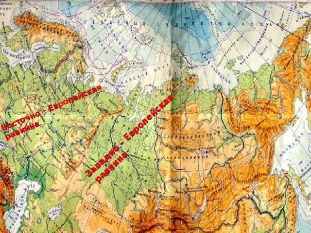 Восточно – Европейская равнина Западно – Европейская  равнина