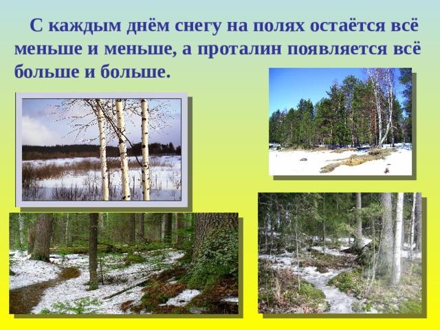С каждым днём снегу на полях остаётся всё меньше и меньше, а проталин появляется всё больше и больше.