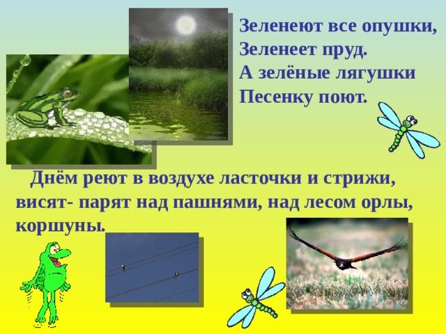 Зеленеют все опушки, Зеленеет пруд. А зелёные лягушки Песенку поют.  Днём реют в воздухе ласточки и стрижи, висят- парят над пашнями, над лесом орлы, коршуны.