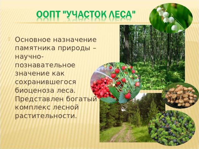 Основное назначение памятника природы – научно-познавательное значение как сохранившегося биоценоза леса. Представлен богатый комплекс лесной растительности.