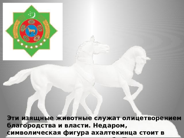 Эти изящные животные служат олицетворением благородства и власти. Недаром, символическая фигура ахалтекинца стоит в центре государственного герба Туркменистана.