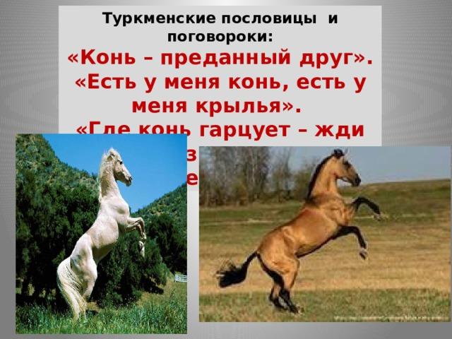 Туркменские пословицы и поговороки: «Конь – преданный друг». «Есть у меня конь, есть у меня крылья». «Где конь гарцует – жди праздника». «Конь – мечта джигита».