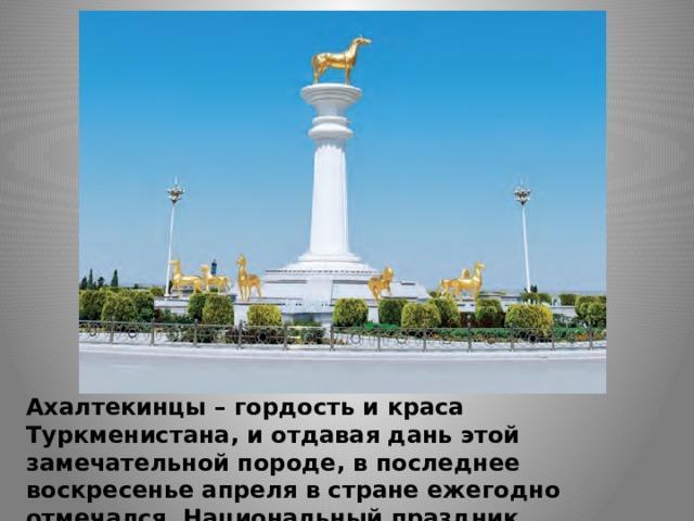 Ахалтекинцы – гордость и краса Туркменистана, и отдавая дань этой замечательной породе, в последнее воскресенье апреля в стране ежегодно отмечался Национальный праздник туркменского скакуна.