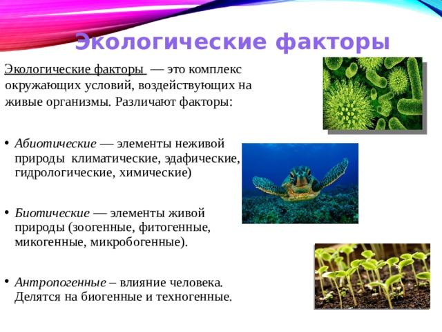 Экологические факторы Экологические факторы — это комплекс окружающих условий, воздействующих на живые организмы. Различаютфакторы: