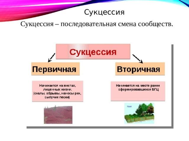 Сукцессия Сукцессия  – последовательная смена сообществ.