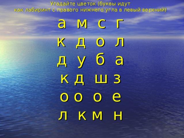 Угадайте цветок (буквы идут  как лабиринт с правого нижнего угла в левый верхний)  а м с г  к д о л  д у б а  к д ш з  о о о е  л к м н