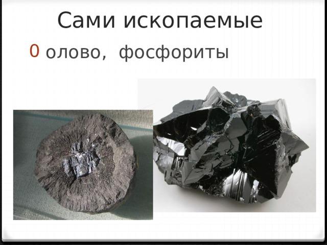 Сами ископаемые