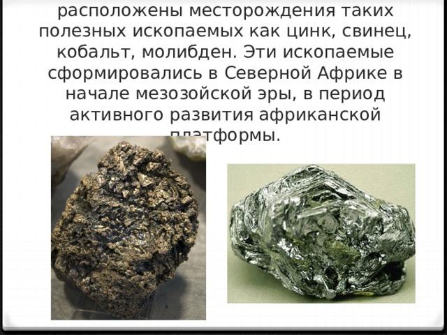 На территории Северной Африки расположены месторождения таких полезных ископаемых как цинк, свинец, кобальт, молибден. Эти ископаемые сформировались в Северной Африке в начале мезозойской эры, в период активного развития африканской платформы.