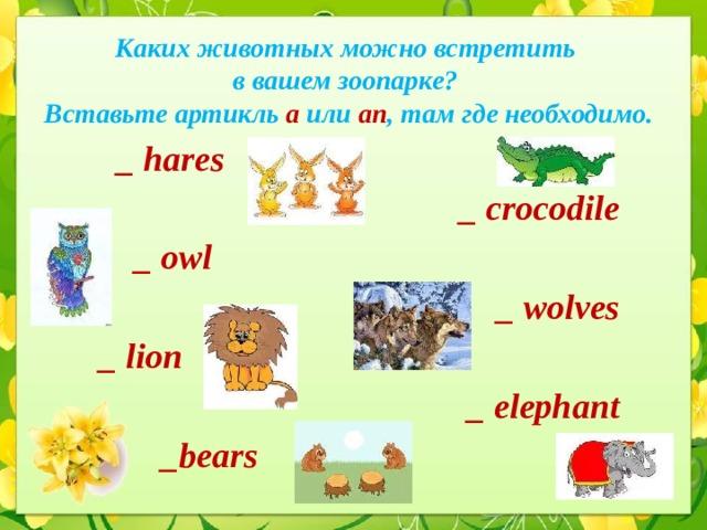 Каких животных можно встретить  в вашем зоопарке?  Вставьте артикль a или an ,  там где необходимо.  _ hares _ crocodile  _ owl _ wolves _ lion _ elephant  _bears