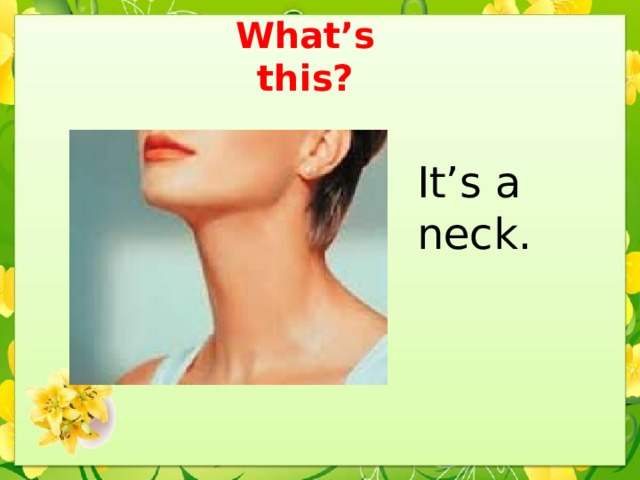 What's this? It's a neck.
