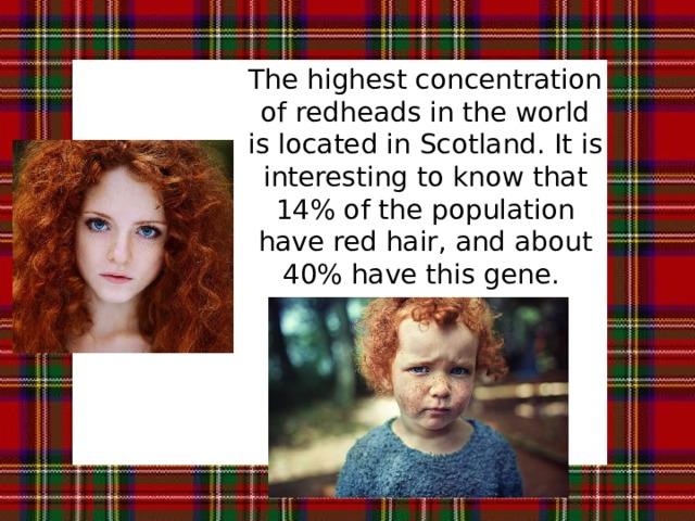The highest concentration of redheads in the world is located in Scotland. It is interesting to know that 14% of the population have red hair, and about 40% have this gene. Самая высокая концентрация рыжих в мире находится в Шотландии. Интересно знать, что 14% населения имеет красные волосы, и около 40% имеют этот ген.