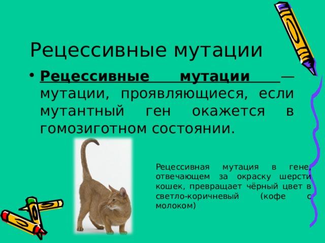 Рецессивные мутации Рецессивные мутации — мутации, проявляющиеся, если мутантный ген окажется в гомозиготном состоянии. Рецессивная мутация в гене, отвечающем за окраску шерсти кошек, превращает чёрный цвет в светло-коричневый (кофе с молоком)