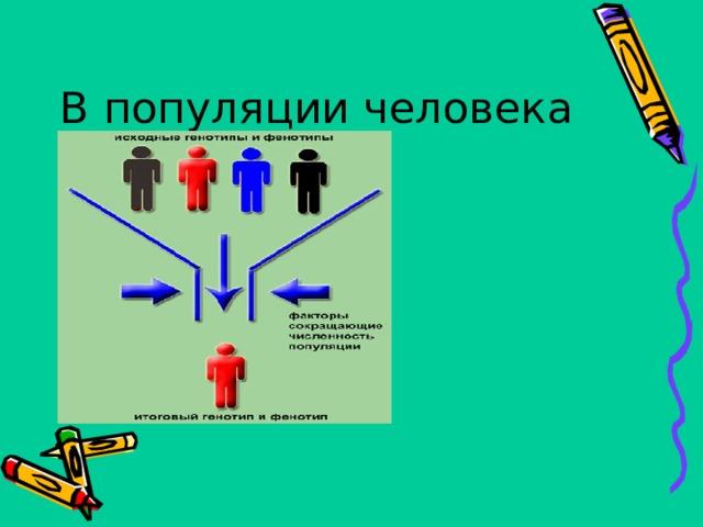 В популяции человека