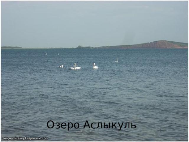 Вопрос № 5 Это самое большое озеро республики. Для Башкортостана оно представляет такую же ценность, как Байкал для России. Вода в нем солоноватая, жесткая, что и определяет название самого озера – с башкирского переводится как «горькое озеро». Озеро Аслыкуль