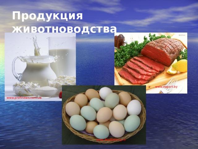 Продукция животноводства www.export.by www.profinews.com.ua www . foodtalking.ru