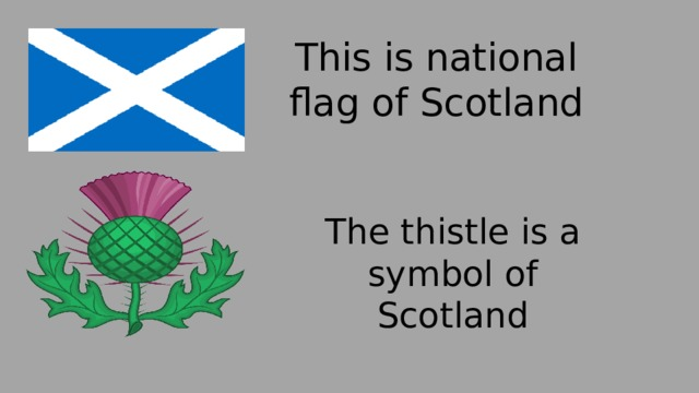 This is national flag of Scotland   The thistle is a symbol of Scotland