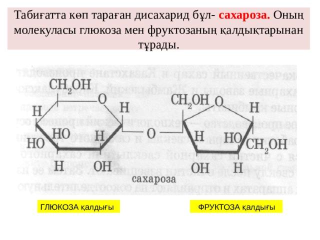 Табиғатта көп тараған дисахарид бұл- сахароза. Оның молекуласы глюкоза мен фруктозаның қалдықтарынан тұрады. ГЛЮКОЗА қалдығы  ФРУКТОЗА қалдығы