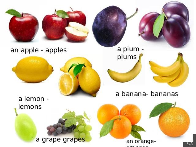 a plum - plums an apple - apples a banana- bananas a lemon - lemons a grape grapes an orange-oranges