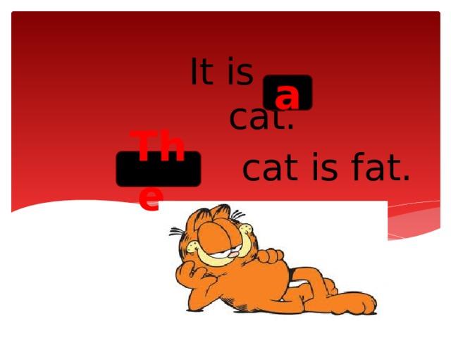 It is cat.  cat is fat. a The