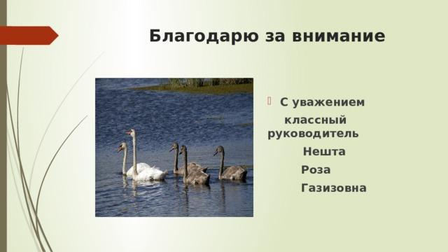 Благодарю за внимание С уважением  классный  руководитель  Нешта   Роза   Газизовна