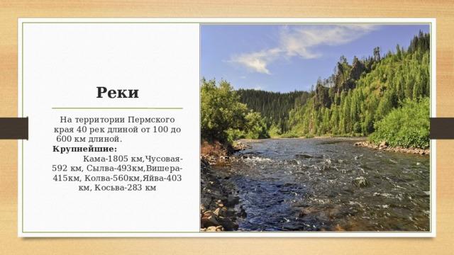 Реки На территории Пермского края 40 рек длиной от 100 до 600 км длиной. Крупнейшие: Кама-1805 км,Чусовая-592 км, Сылва-493км,Вишера-415км, Колва-560км,Яйва-403 км, Косьва-283 км