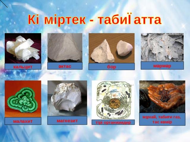 мәрмәр әктас бор кальцит мұнай, табиғи газ, тас көмір магнезит малахит тірі организмдер