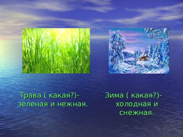 Трава ( какая?)- зеленая и нежная. Зима ( какая?)- холодная и снежная.