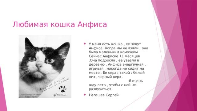 Любимая кошка Анфиса