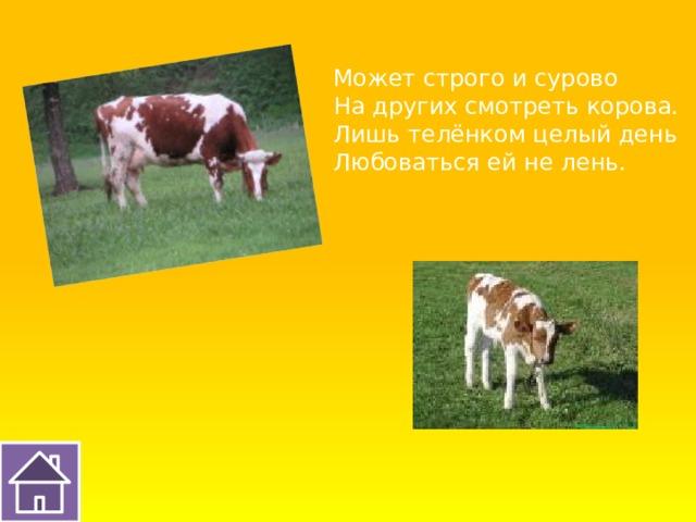 Может строго и сурово На других смотреть корова. Лишь телёнком целый день Любоваться ей не лень.