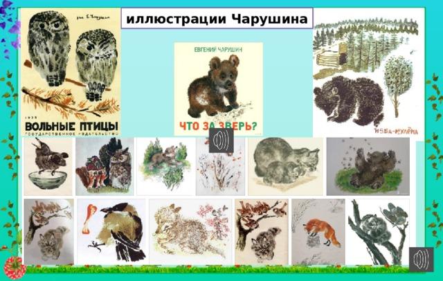 иллюстрации Чарушина