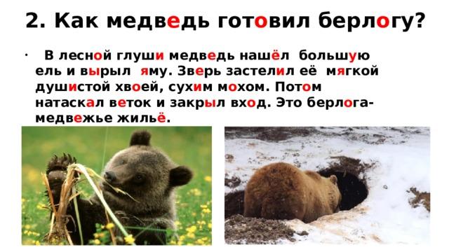 2. Как медв е дь гот о вил берл о гу?
