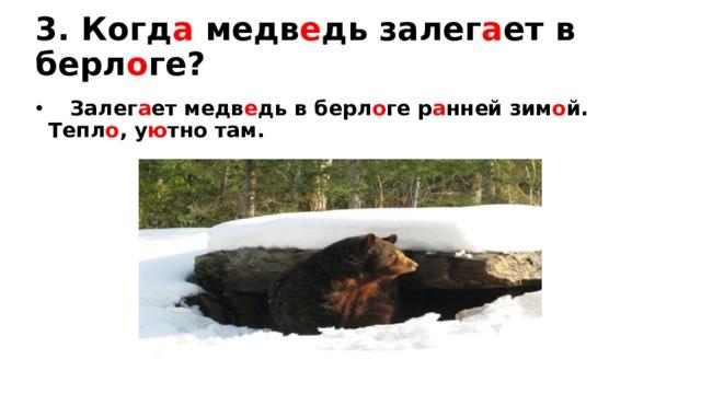 3. Когд а медв е дь залег а ет в берл о ге?