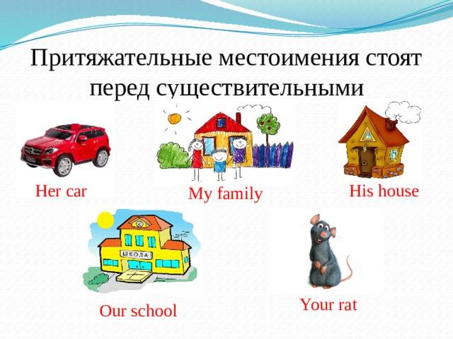 Притяжательные местоимения стоят перед существительными Her car His house My family Your rat Our school
