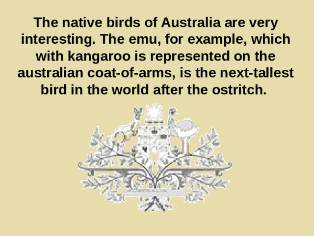 The native birds of Australia are very interesting. The emu, for example, which with kangaroo is represented on the australian coat-of-arms, is the next-tallest bird in the world after the ostritch.