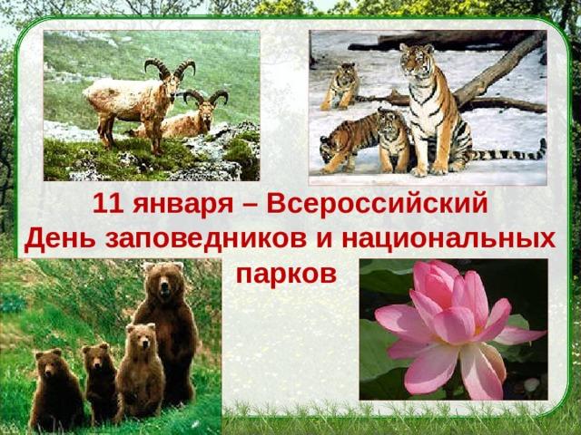 11 января – Всероссийский Деньзаповедников и национальных парков