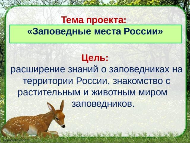 Тема проекта:  «Заповедные места России» Цель:  расширение знаний о заповедниках  на территории России, знакомство с растительным и животным миром  заповедников.