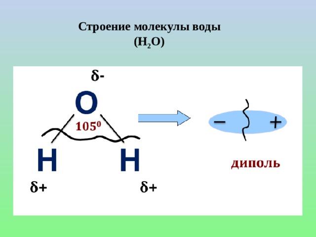 Строение молекулы воды (H 2 O)