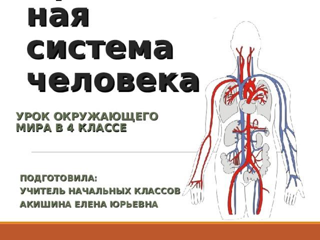 Кровеносная система человека УРОК ОКРУЖАЮЩЕГО МИРА В 4 КЛАССЕ ПОДГОТОВИЛА: УЧИТЕЛЬ НАЧАЛЬНЫХ КЛАССОВ АКИШИНА ЕЛЕНА ЮРЬЕВНА